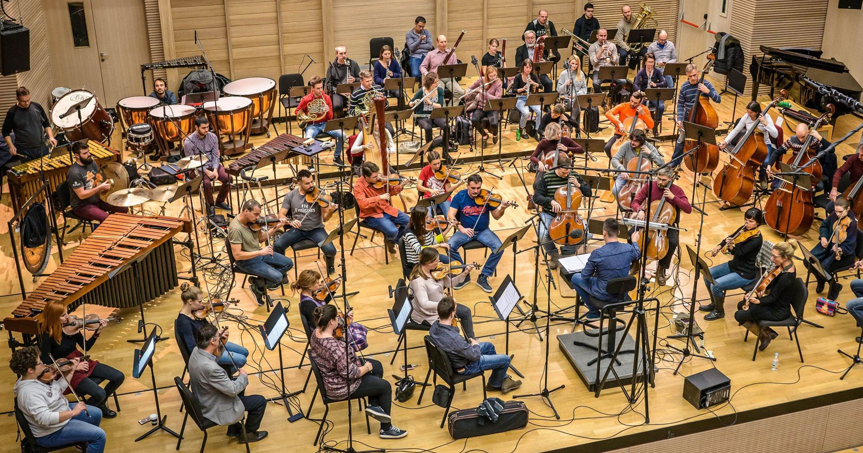 Zagreb Festival Orchestra in concert
