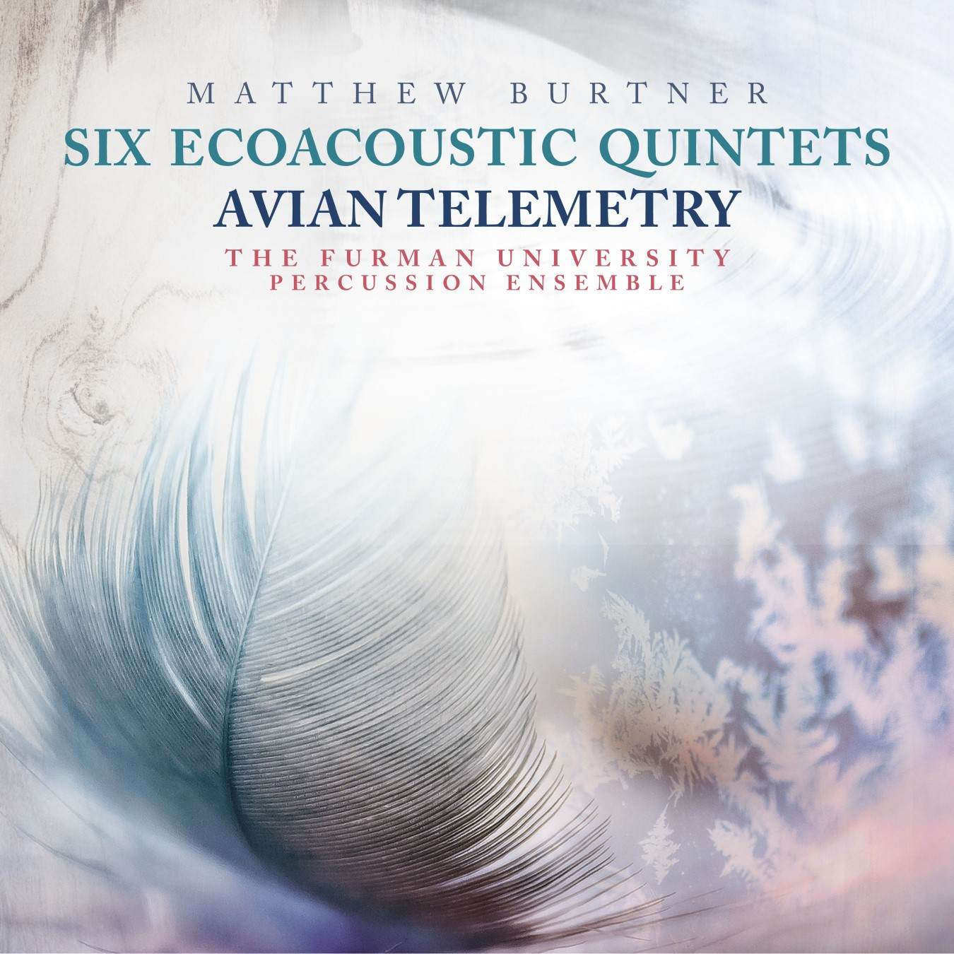 Matthew Burtner album art- feather and sky