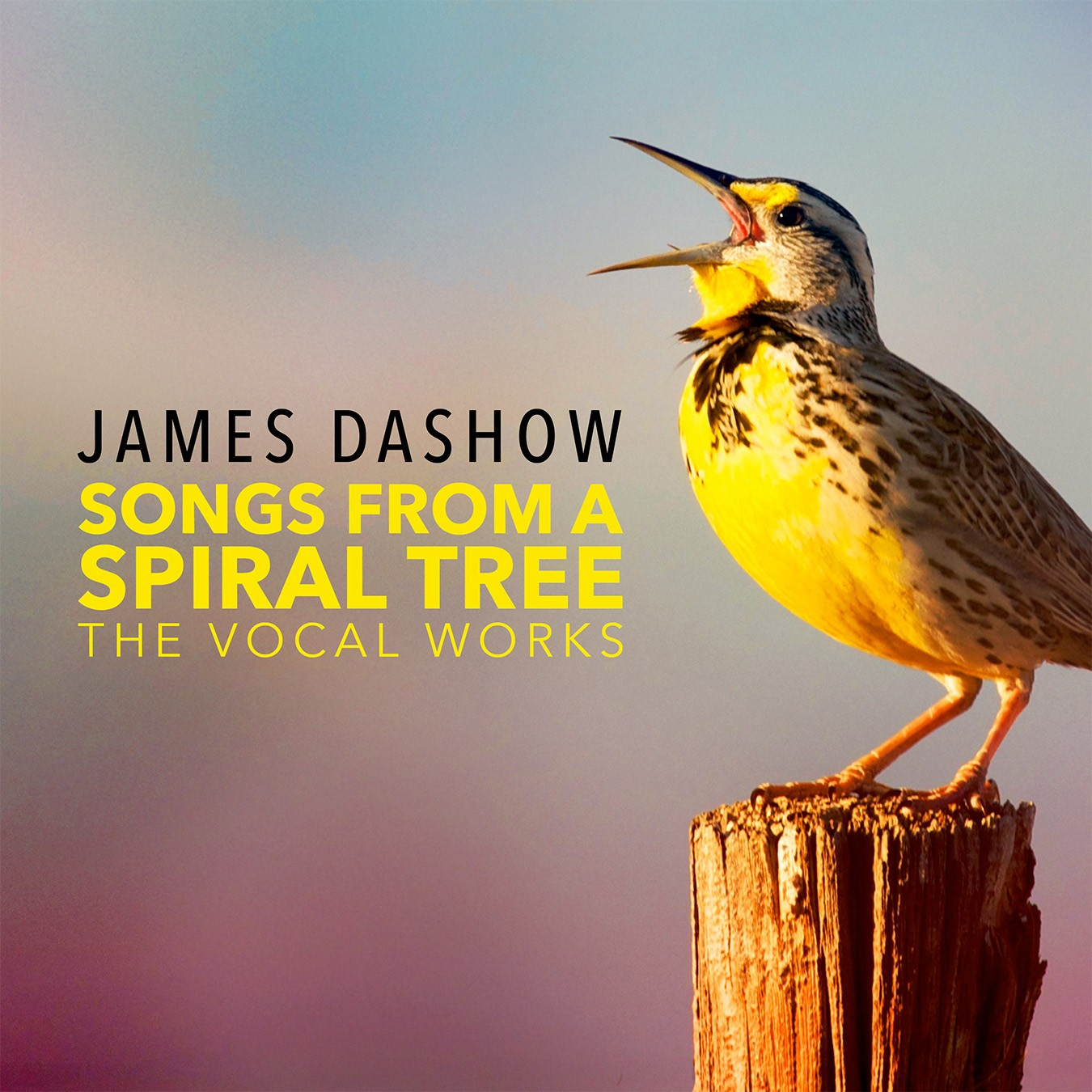Songs From A Spiral Tree - James Dashow - Album Cover