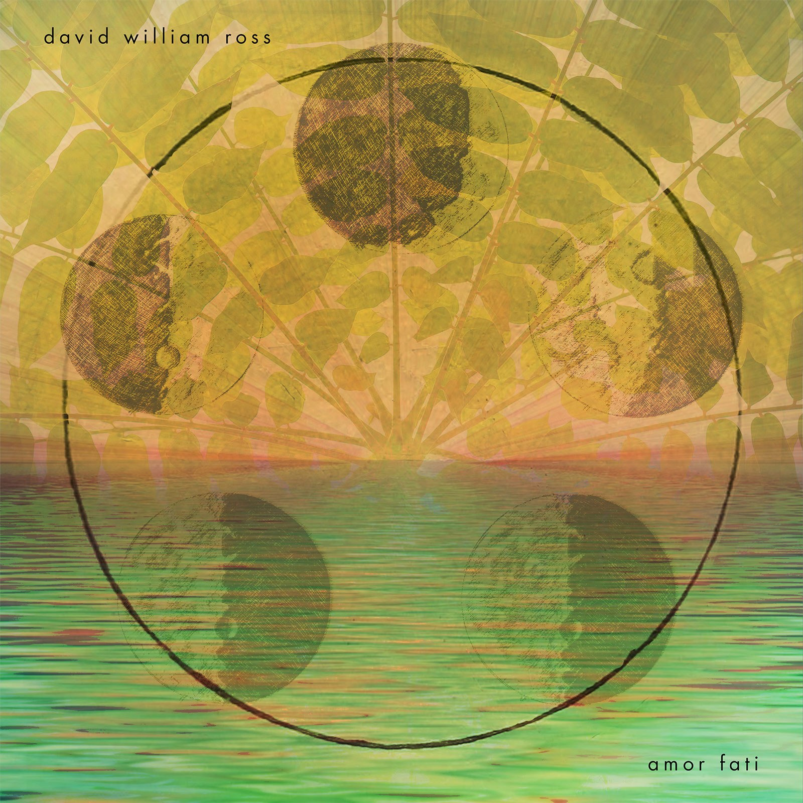 AMOR FATI - David Ross - Album Cover