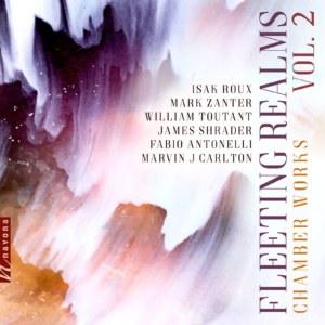 Fleeting Realms Vol. 2 - album cover
