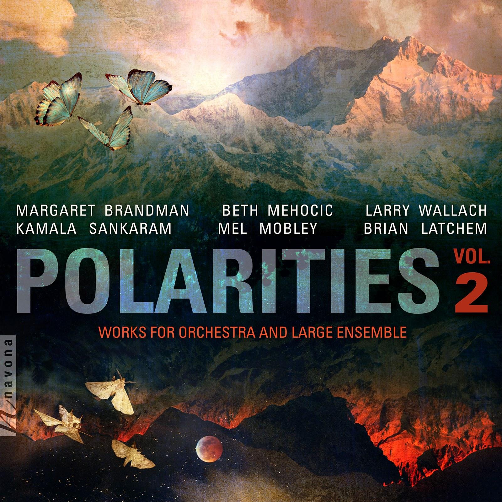 POLARITIES VOL. 2 - Album Cover